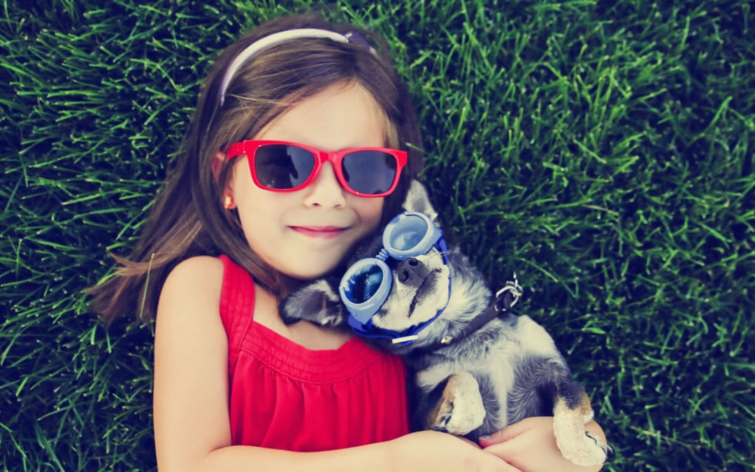 The Best Apps For Pet Lovers