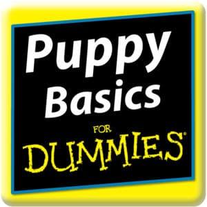 Puppy Basics for Dummies
